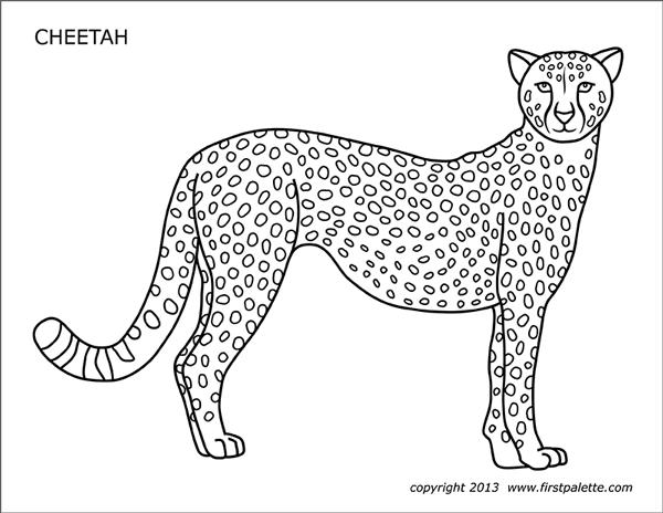 cheetah coloring page free printable cheetah coloring pages for kids cheetah coloring page