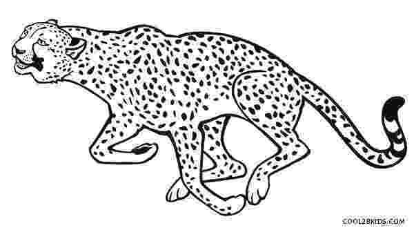 cheetah pictures to print printable cheetah coloring pages for kids cool2bkids to pictures cheetah print