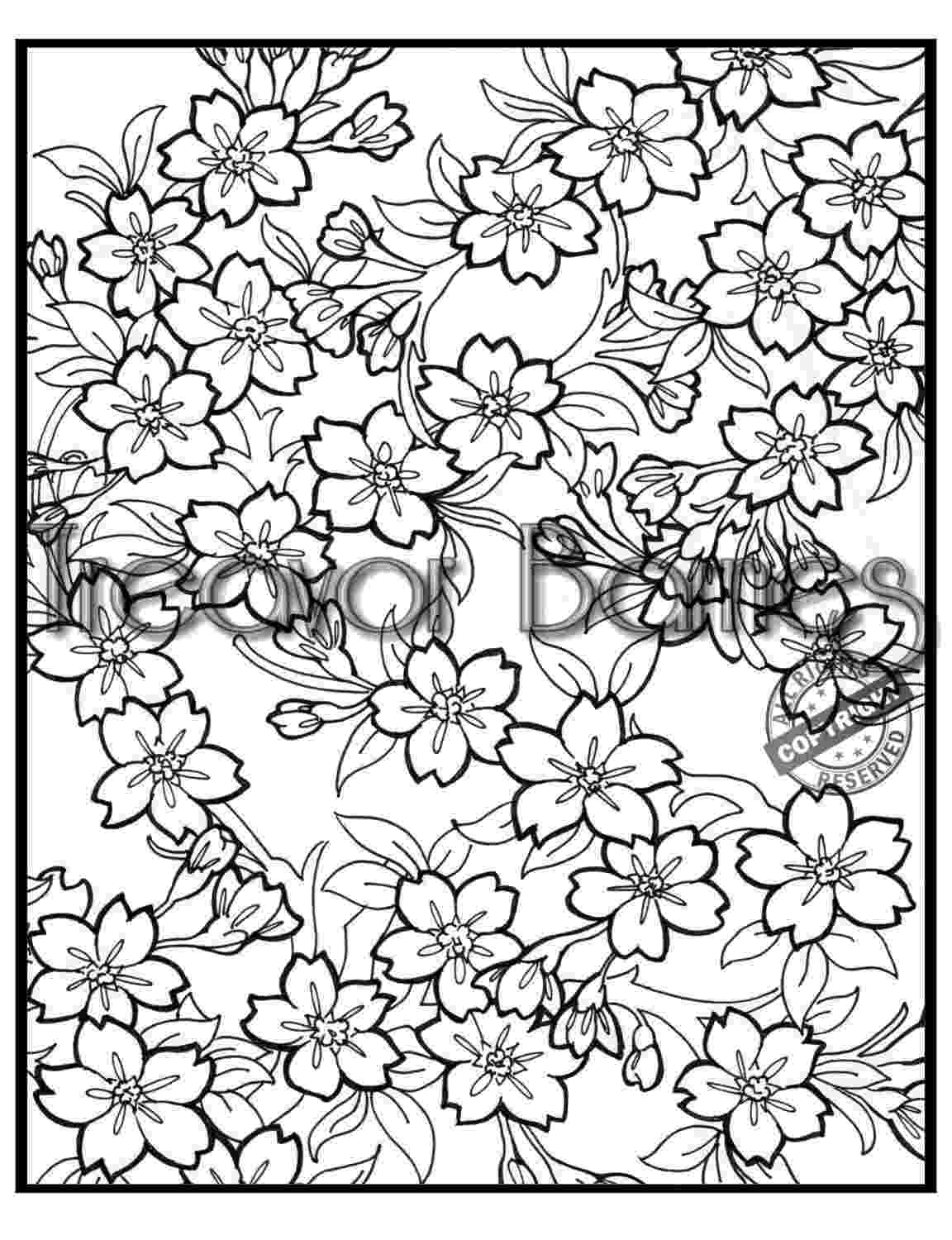 cherry blossom coloring pages digital printable cherry blossom coloring book by pages blossom cherry coloring