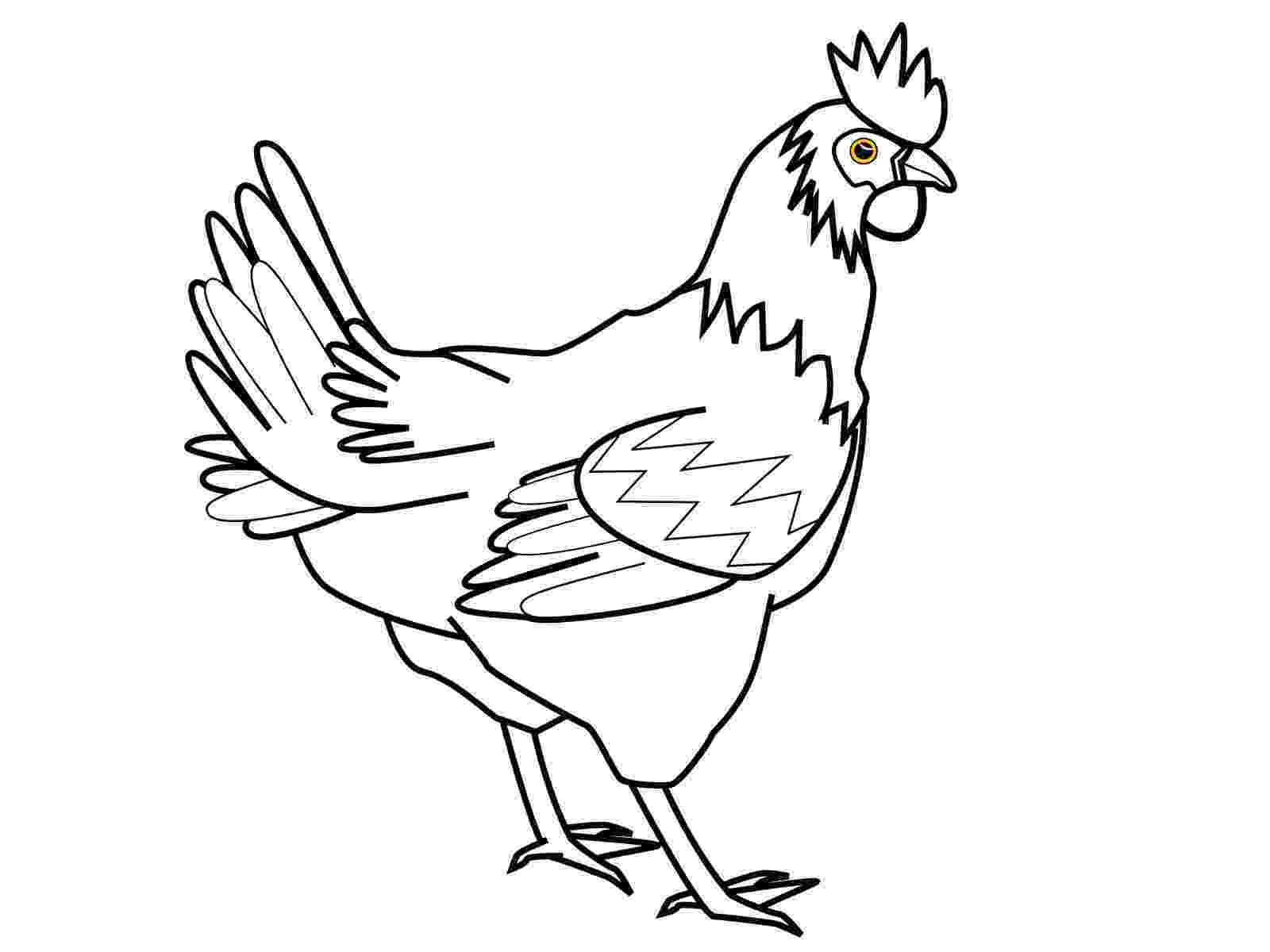 chicken pictures to colour chicken coloring pages best coloring pages for kids colour chicken to pictures