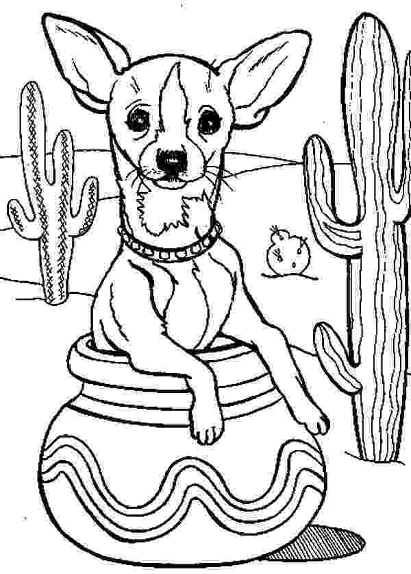 chihuahua colouring pages chihuahua coloring page for kids stitch coloring pages pages colouring chihuahua