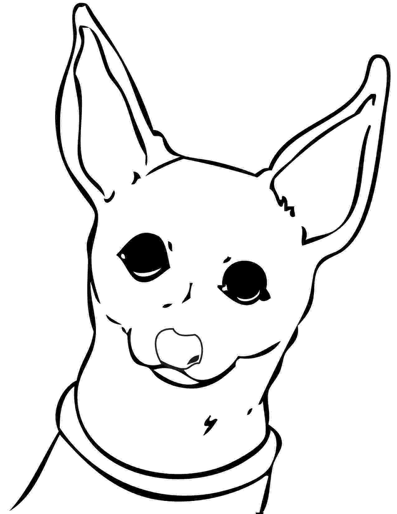 chihuahua colouring pages chihuahua coloring pages coloring home chihuahua colouring pages