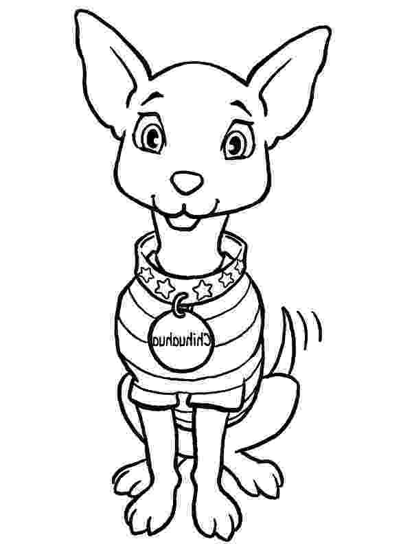 chihuahua colouring pages chihuahua coloring pages to download and print for free pages colouring chihuahua