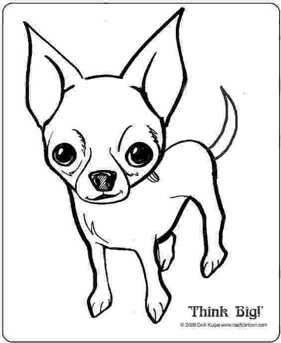 chihuahua colouring pages chihuahua dog coloring pages download and print for free pages colouring chihuahua