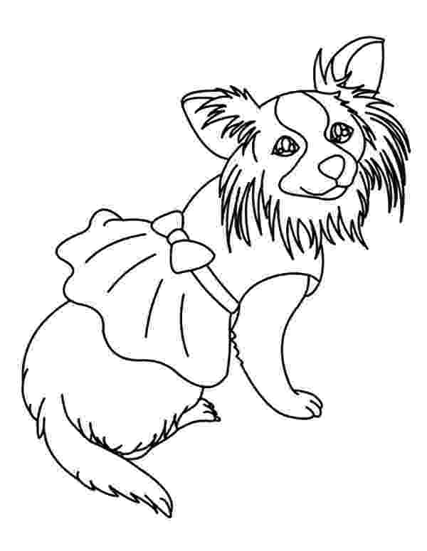 chihuahua colouring pages free online coloring pages thecolor chihuahua colouring pages