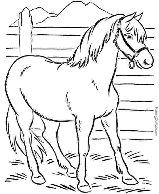 childrens animal colouring books free printable zebra coloring pages for kids zebra books animal colouring childrens