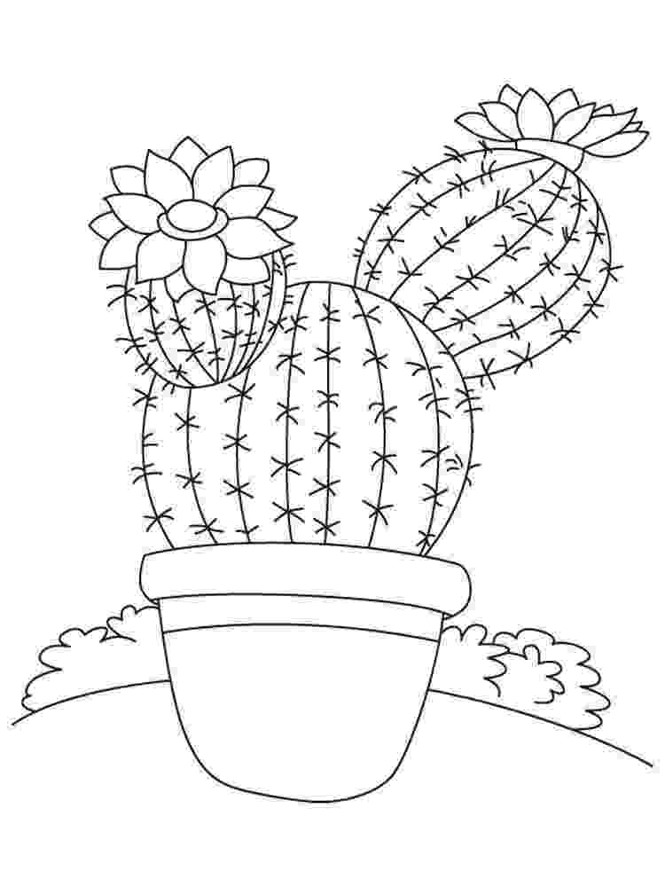 christmas cactus coloring page cactus coloring book coloring pages coloring page christmas cactus