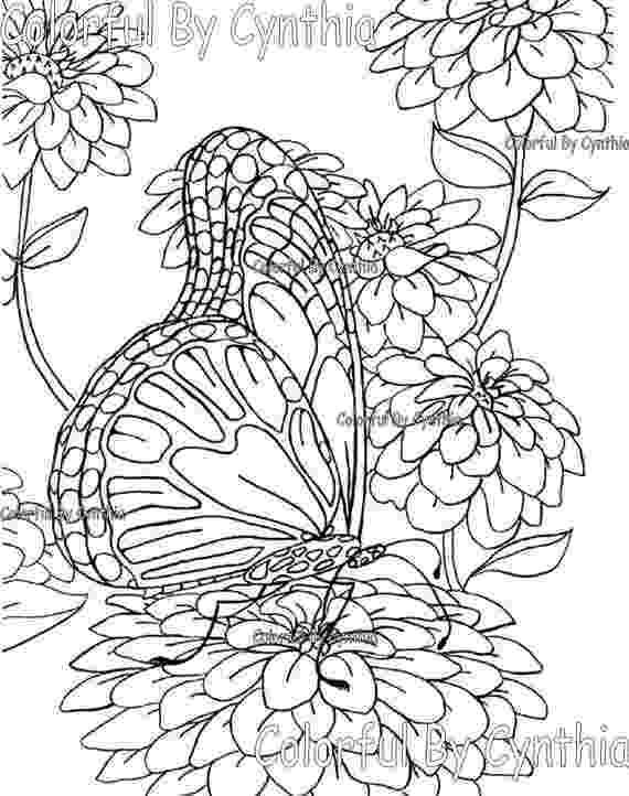 chrysanthemum coloring sheet chrysanthemum 1 coloring page free flowers coloring chrysanthemum sheet coloring