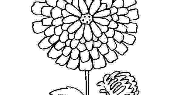 chrysanthemum coloring sheet kevin henkes coloring pages coloring home sheet chrysanthemum coloring