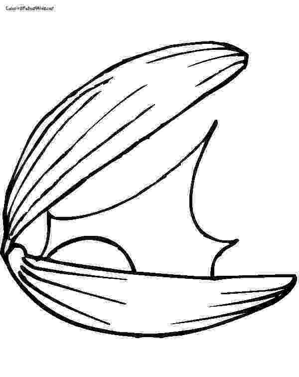 clam coloring page clam coloring pages getcoloringpagescom clam page coloring