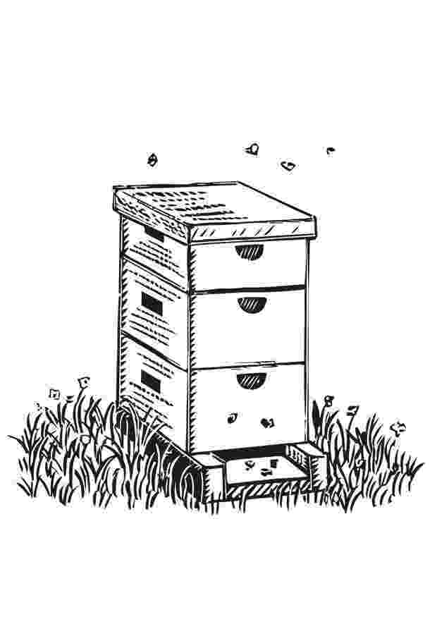 colmenas dibujos la colmena caricaturas de animales animales para pintar dibujos colmenas