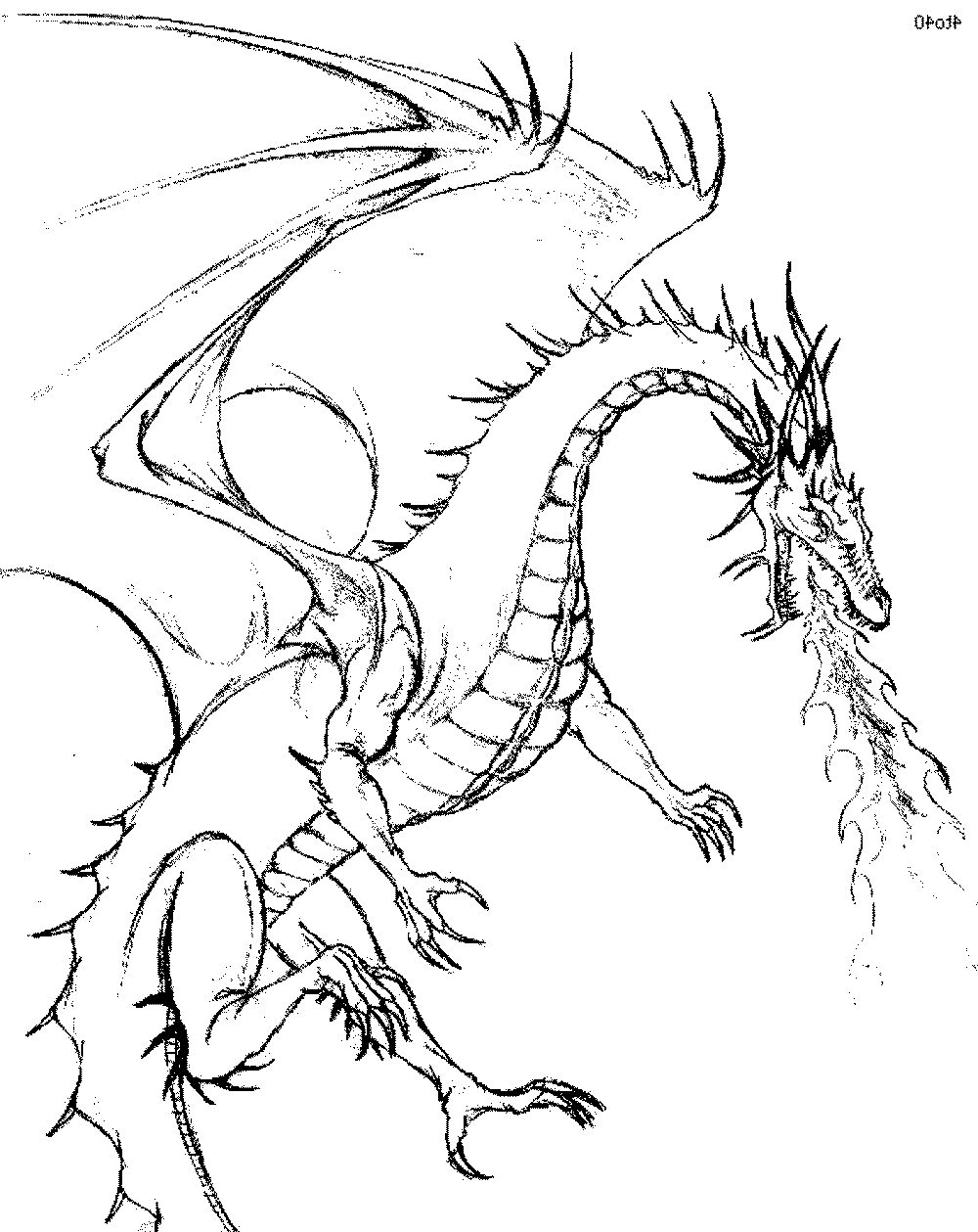 color dragon printable dragon coloring pages for kids cool2bkids color dragon