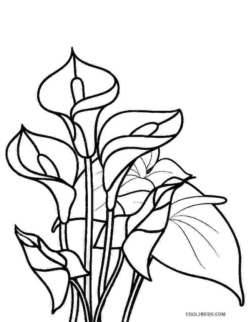 color page flower free printable flower coloring pages for kids best page color flower 1 2