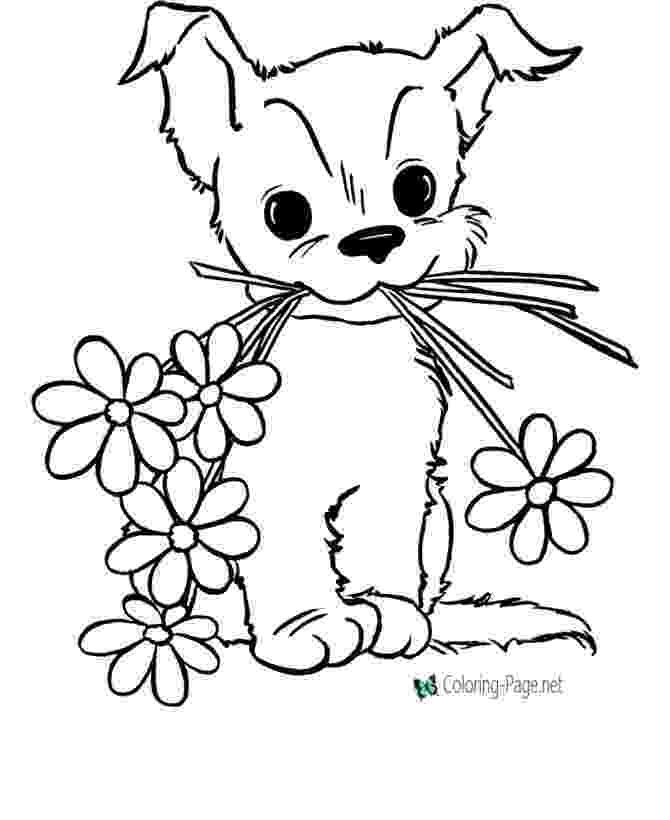 color pictures of flowers free printable flower coloring pages for kids cool2bkids color flowers of pictures