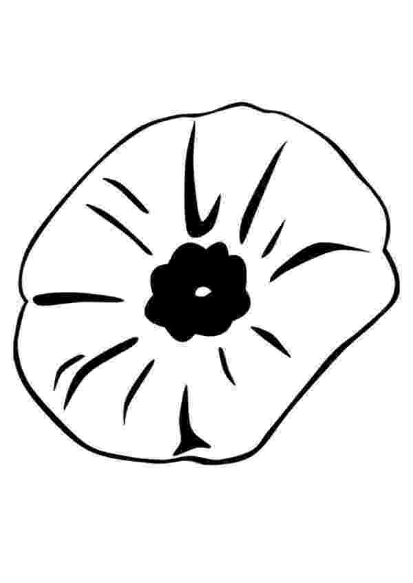 color poppy close up picture of poppy coloring page color luna color poppy
