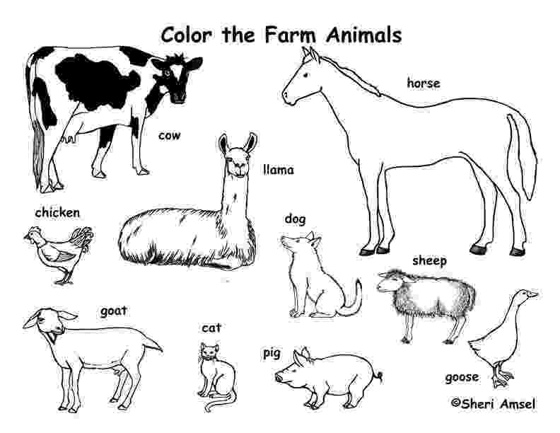 coloring animal farm farm animals coloring page coloring farm animal