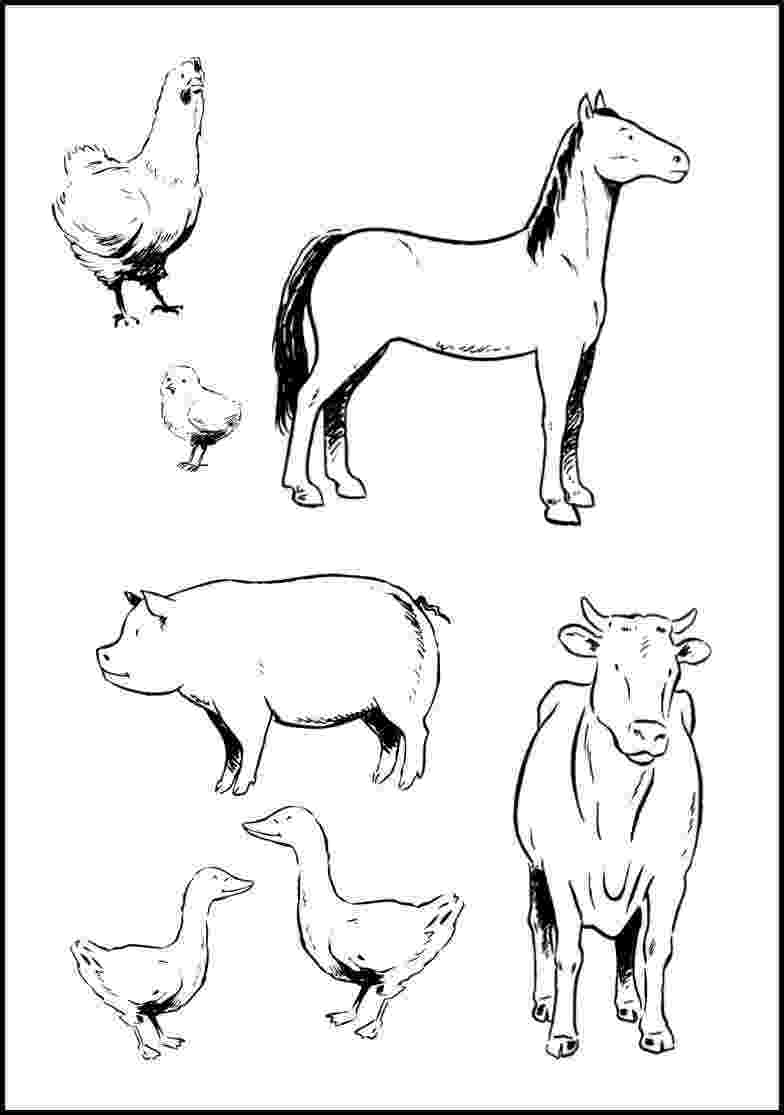 coloring animal farm farm animals coloring pages getcoloringpagescom coloring animal farm