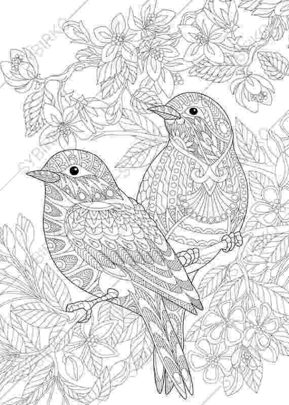 coloring book birds pictures birds coloring pages getcoloringpagescom book coloring pictures birds