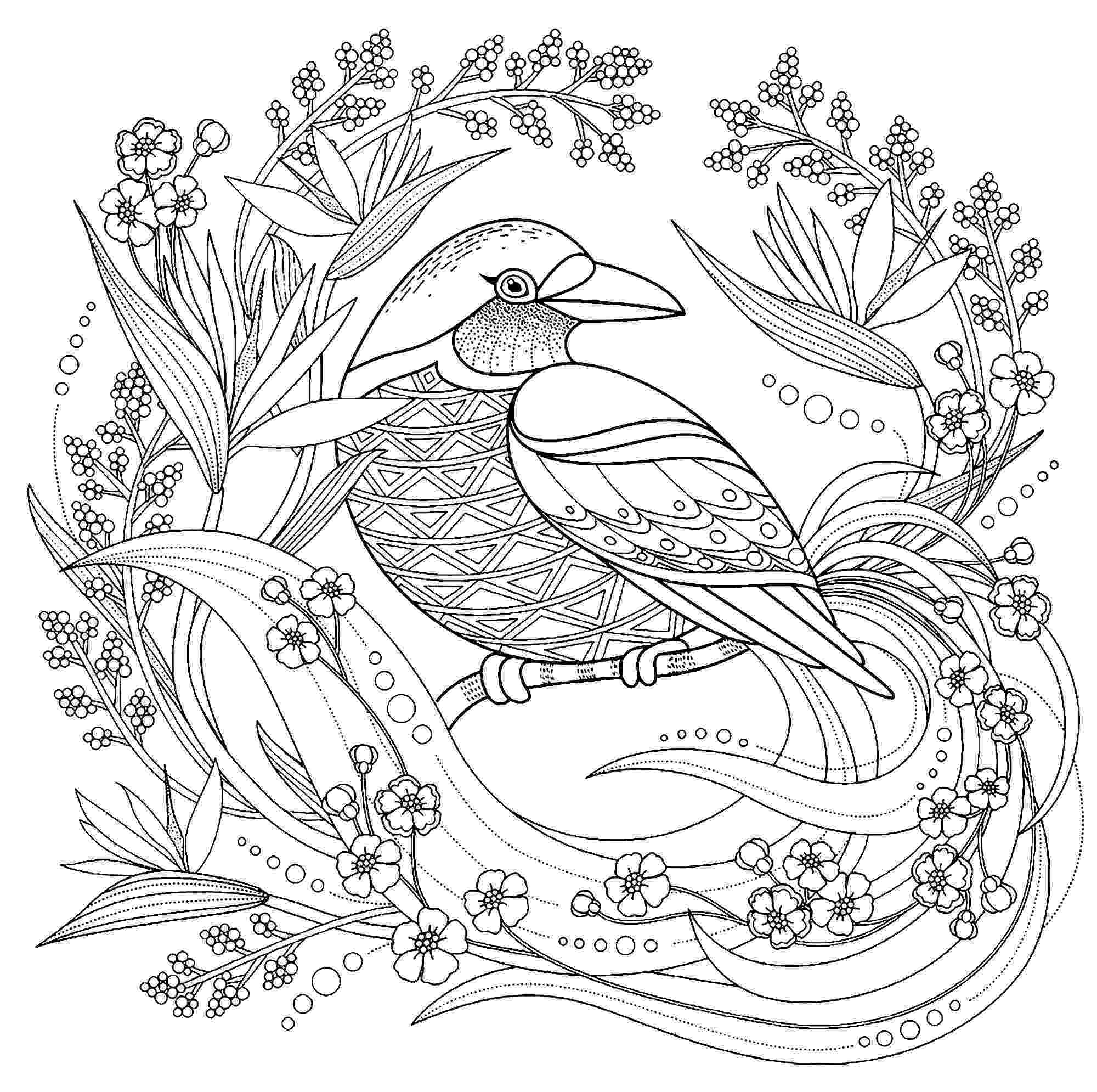 coloring book birds pictures line art coloring page bird with blossoms the book pictures coloring birds