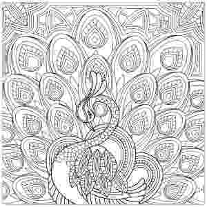 coloring book for adults where to peacocks coloring pages for adults to coloring adults for where book