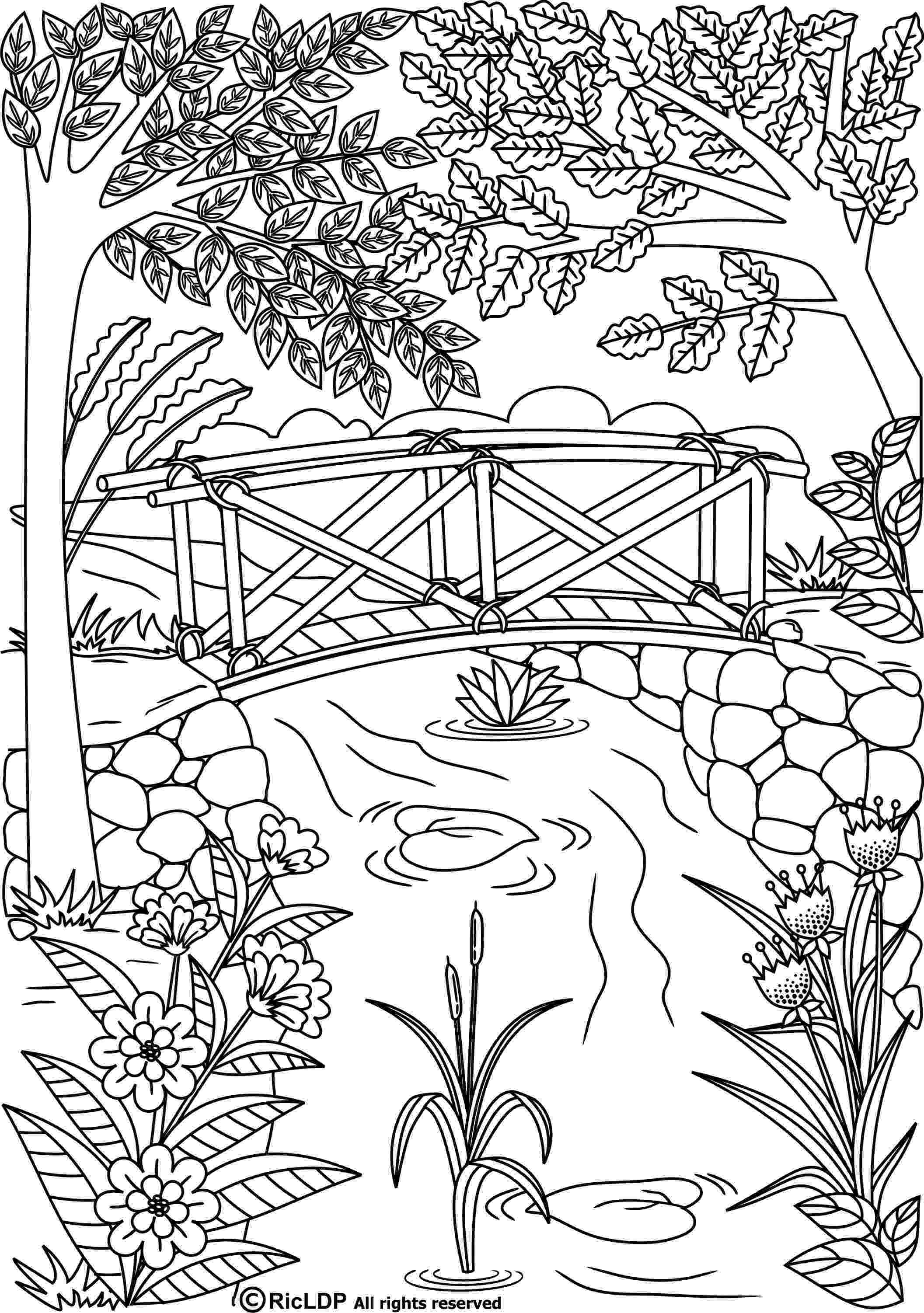 coloring book for grown ups printable 584 best colouring pages for grown ups images on pinterest ups coloring grown printable for book