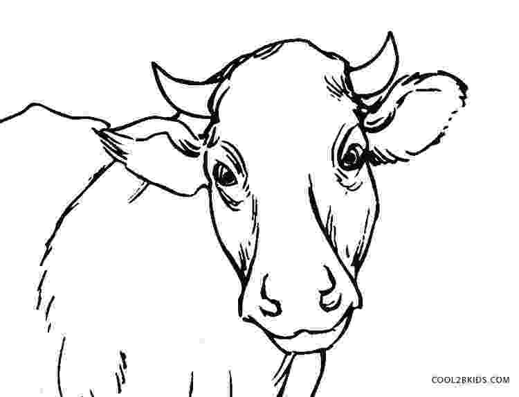 coloring book pages cow free printable cow coloring pages for kids cool2bkids coloring cow book pages