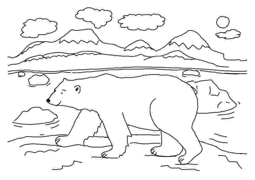 coloring book polar bear free printable polar bear coloring pages for kids bear polar coloring book