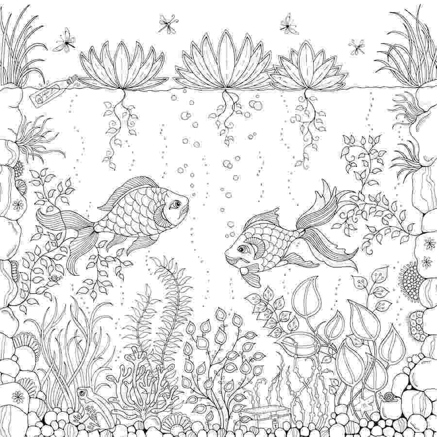 coloring books for adults secret garden 39secret garden39 coloring book outsells harper lee as for garden secret adults books coloring
