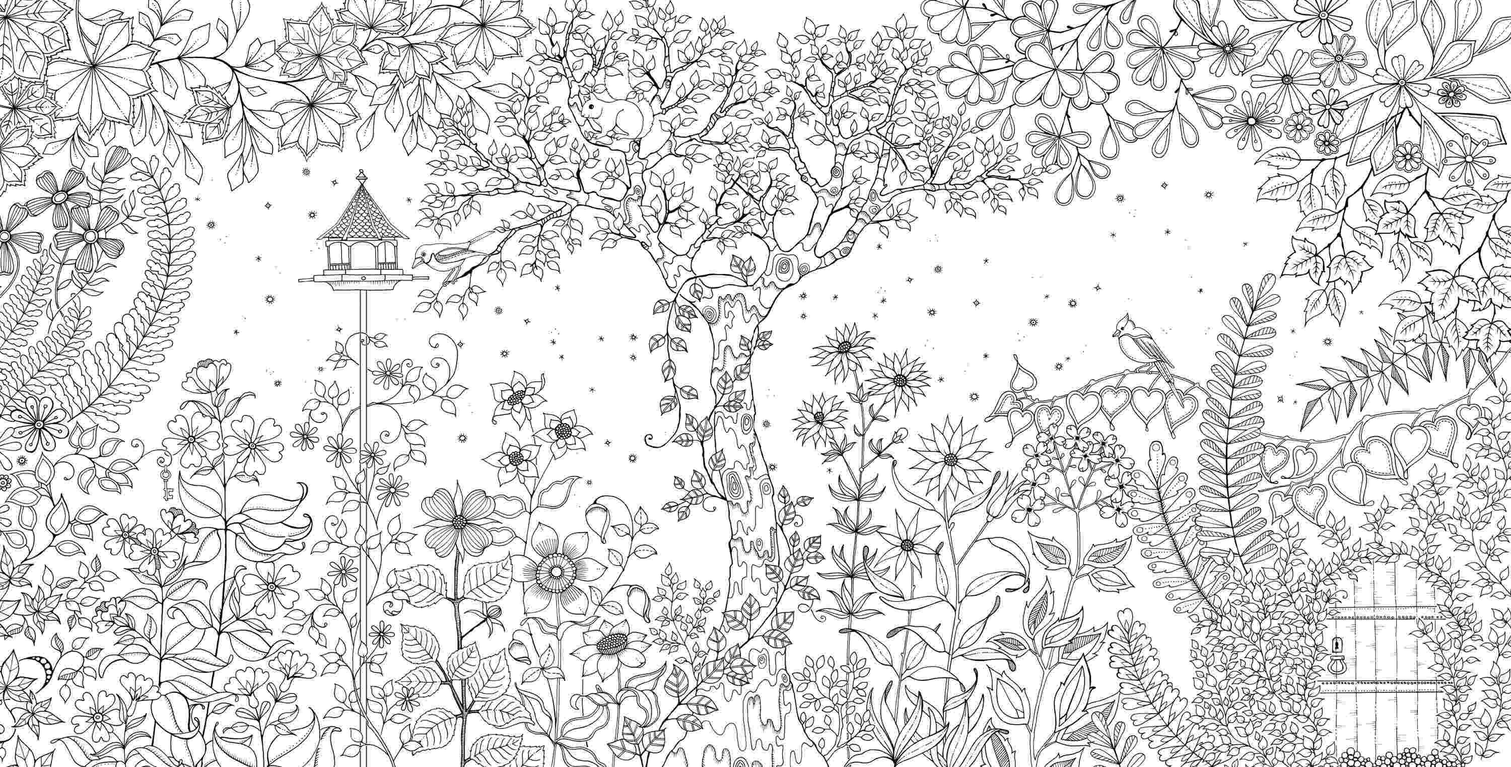 coloring books for adults secret garden a coloring book for adults because everyone deserves to books for secret adults garden coloring