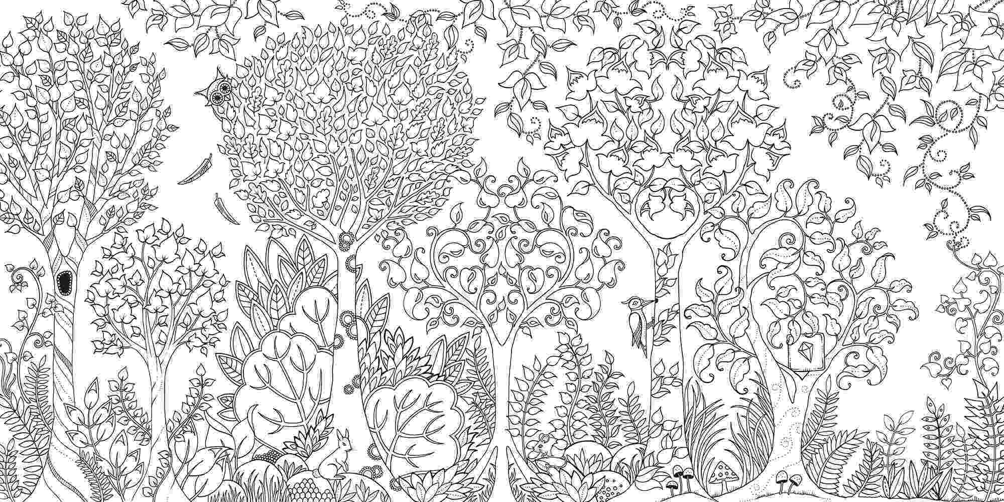 coloring books for adults secret garden secret garden an inky treasure hunt and colouring book secret books adults for garden coloring