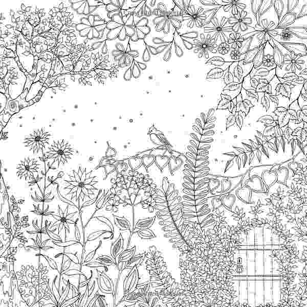 coloring books for adults secret garden why this beautiful coloring book for adults is a major coloring adults books secret garden for