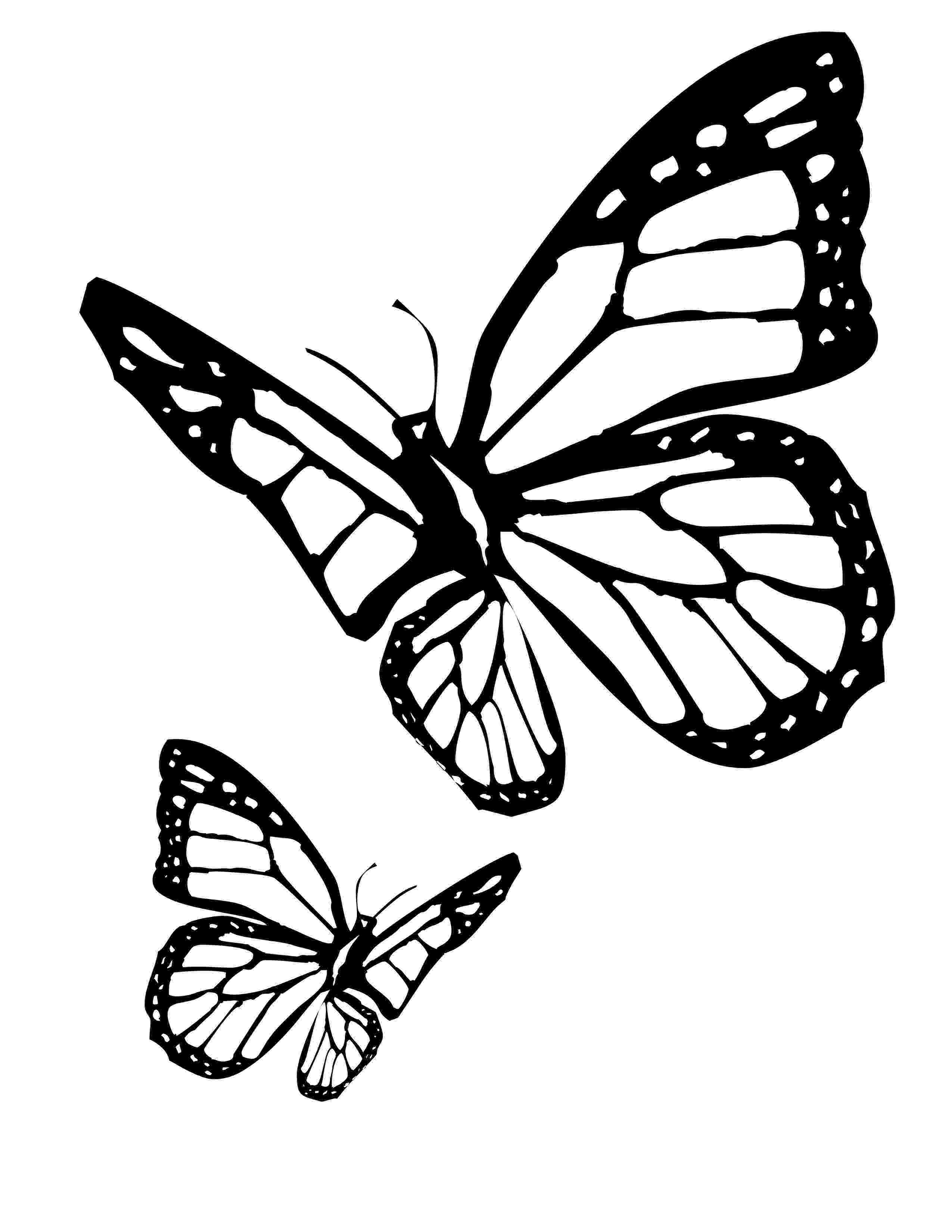 coloring butterfly free printable butterfly colouring pages in the playroom butterfly coloring