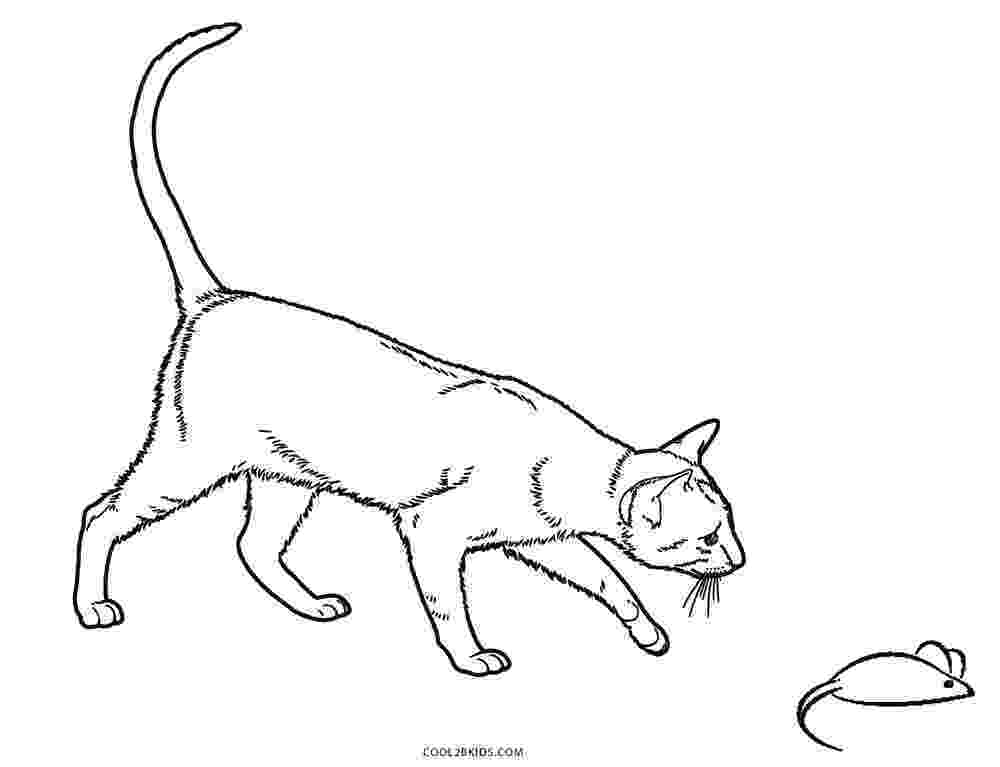 coloring cat pages free printable cat coloring pages for kids pages coloring cat 1 1