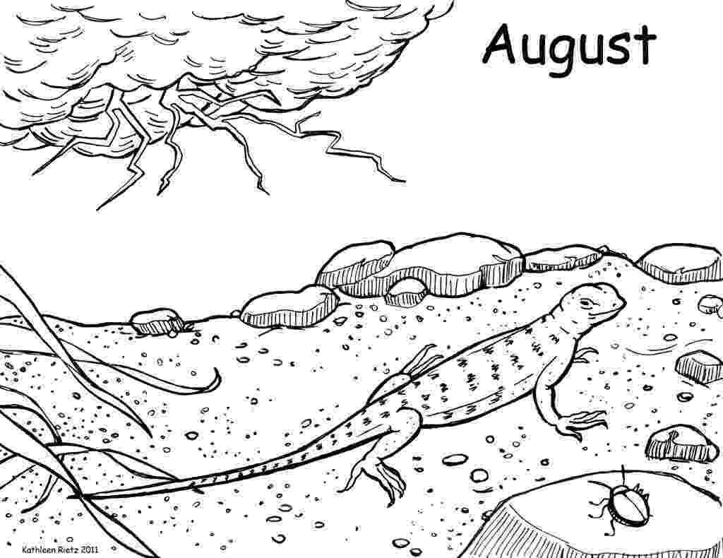coloring page lizard free lizard images download free clip art free clip art page coloring lizard