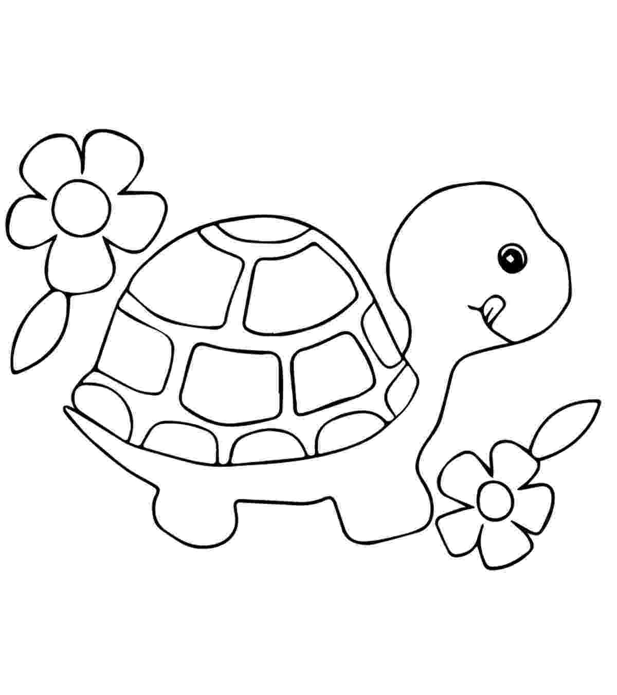 coloring page of turtle animal coloring pages momjunction coloring turtle page of