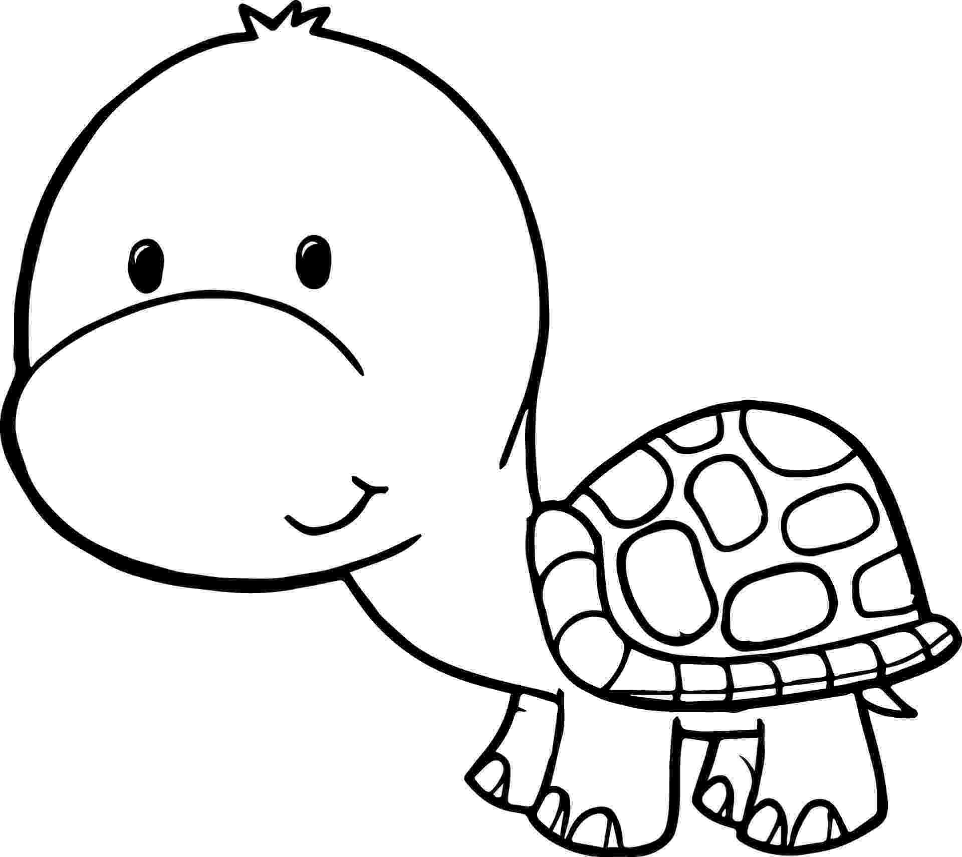 coloring page of turtle cute cartoon turtle wallpapers top free cute cartoon of page turtle coloring