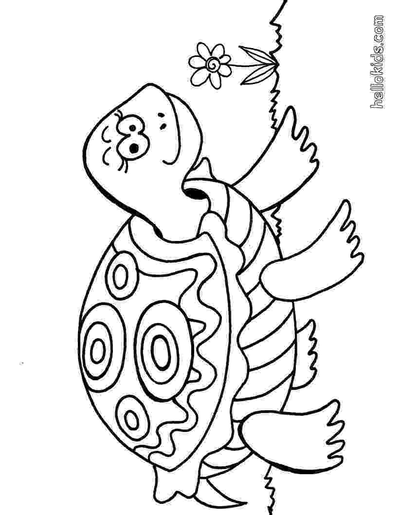coloring page of turtle turtle coloring pages turtle page coloring of turtle