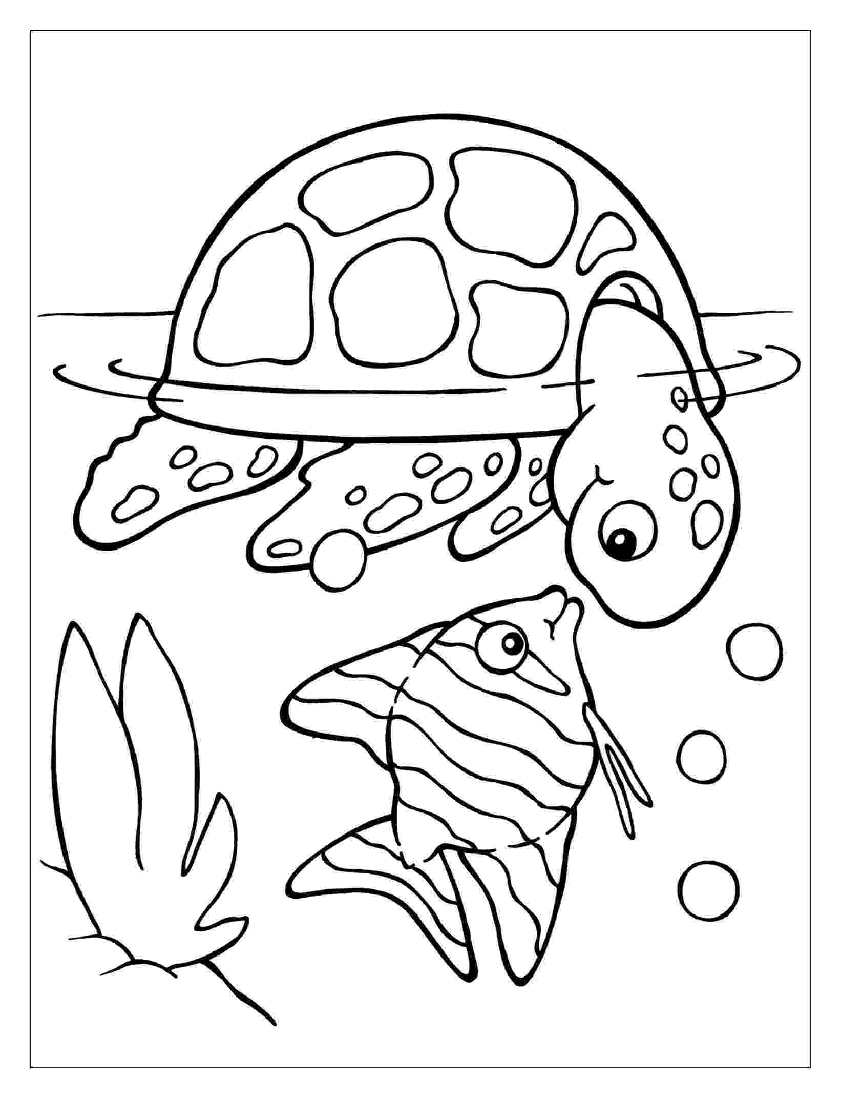 coloring page of turtle turtles to color for kids turtles kids coloring pages turtle of coloring page