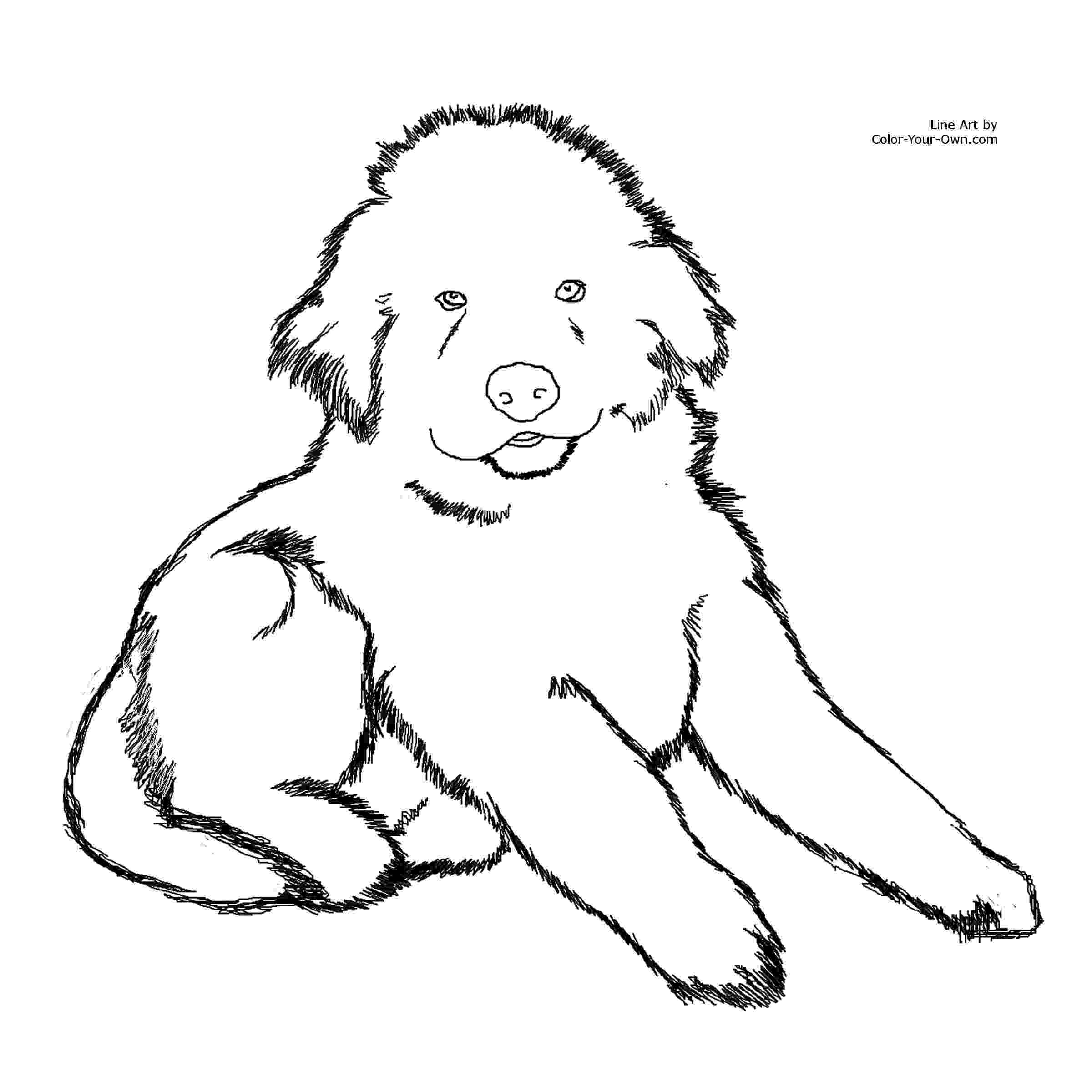 coloring pages 8 1 2 x 11 coloring pages 8 1 2 x 11 free download on clipartmag pages coloring 1 8 x 2 11
