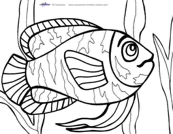 coloring pages 8 1 2 x 11 coloring pages 8 1 2 x 11 free download on clipartmag pages x coloring 2 1 11 8