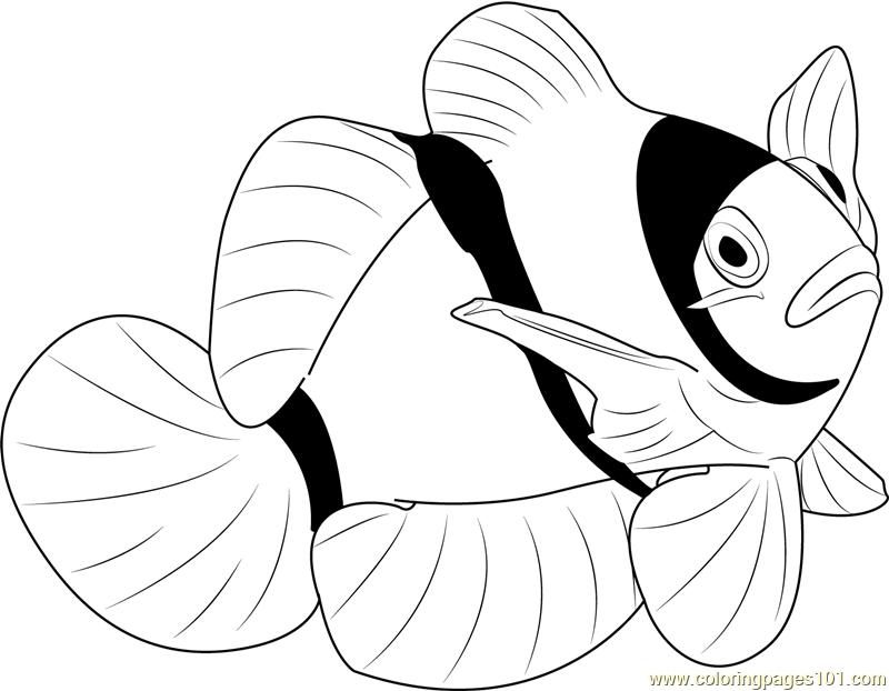 coloring pages clown fish beautiful clown fish coloring pages best place to color pages coloring fish clown