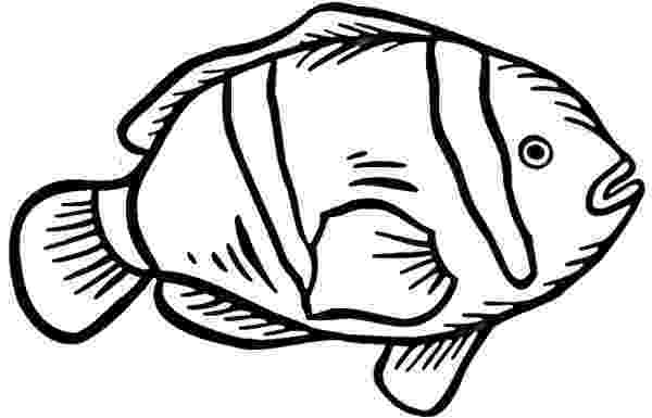 coloring pages clown fish clown fish coloring page at getcoloringscom free pages fish clown coloring