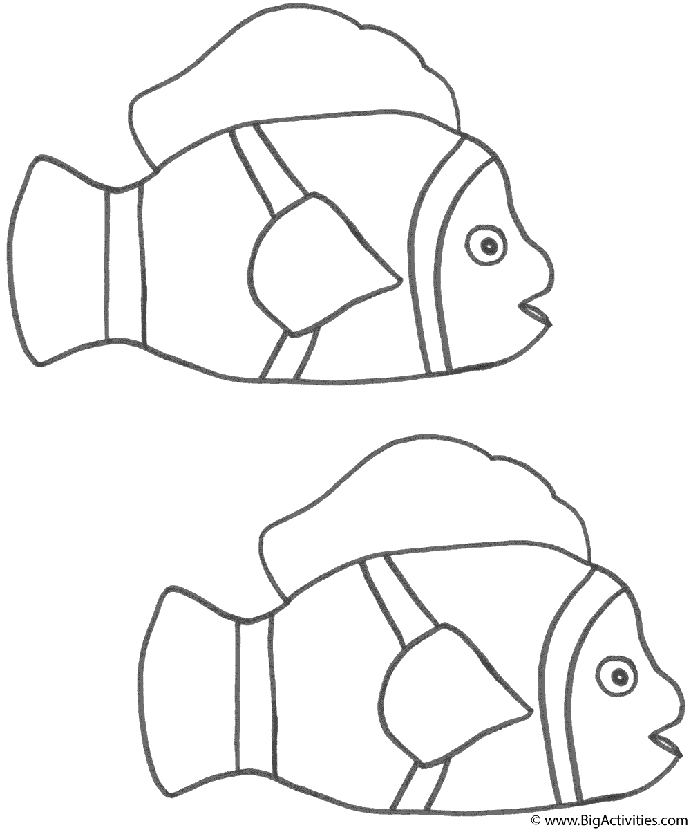 coloring pages clown fish clown fish coloring page free printable coloring pages clown coloring pages fish