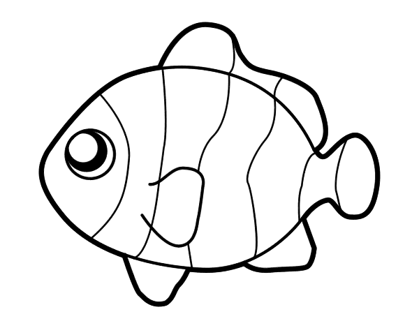 coloring pages clown fish clown fish outline clipart best clown fish coloring pages