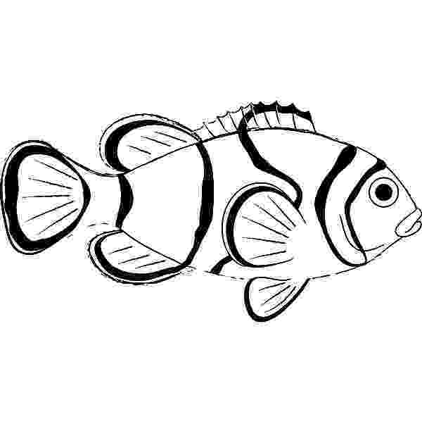 coloring pages clown fish clown fish picture coloring pages best place to color clown pages fish coloring