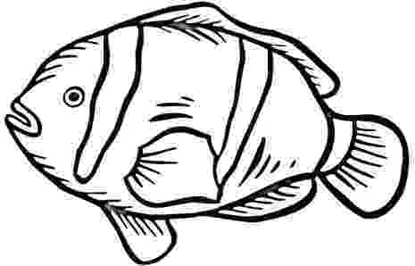 coloring pages clown fish tropical fish coloring pages clipart panda free fish coloring clown pages
