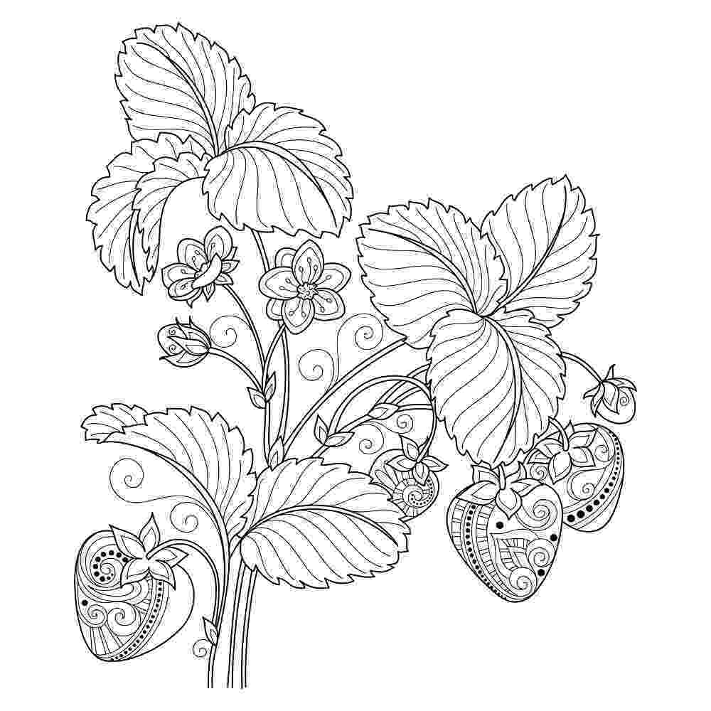 coloring pages for 37 best adults coloring pages updated 2018 pages for coloring