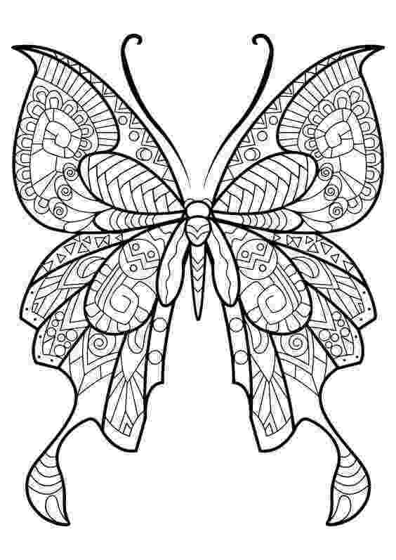 coloring pages for adults butterflies 40 free printable butterfly coloring pages butterflies for pages coloring adults