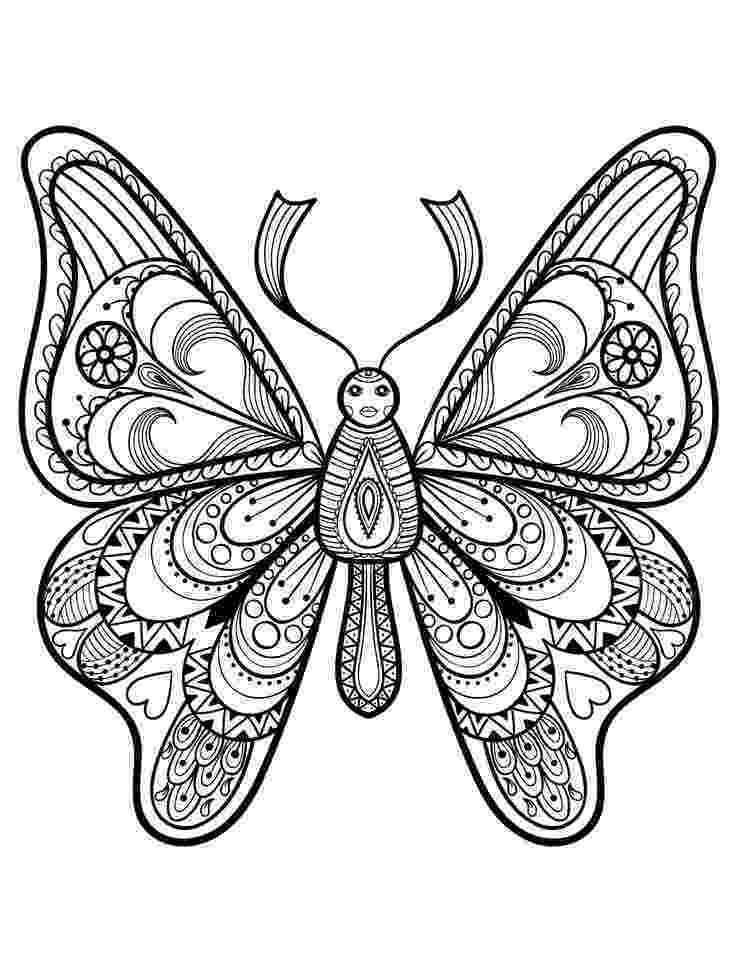 coloring pages for adults butterflies 89 best butterflies coloring pages for adults images on butterflies adults for pages coloring