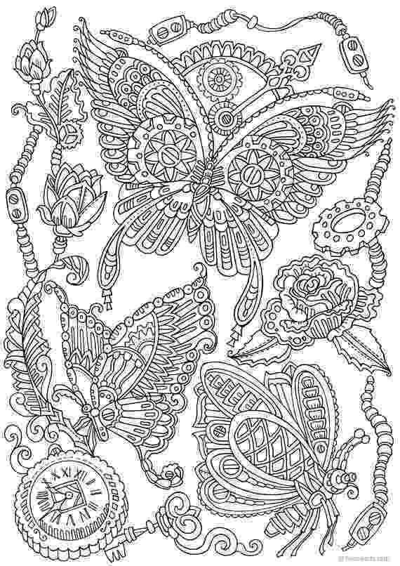 coloring pages for adults butterflies adult butterfly coloring pages butterfly coloring page butterflies pages coloring adults for